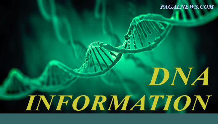 DNA Full Form In Hindi (TOP 1) PAGALNEW.COM