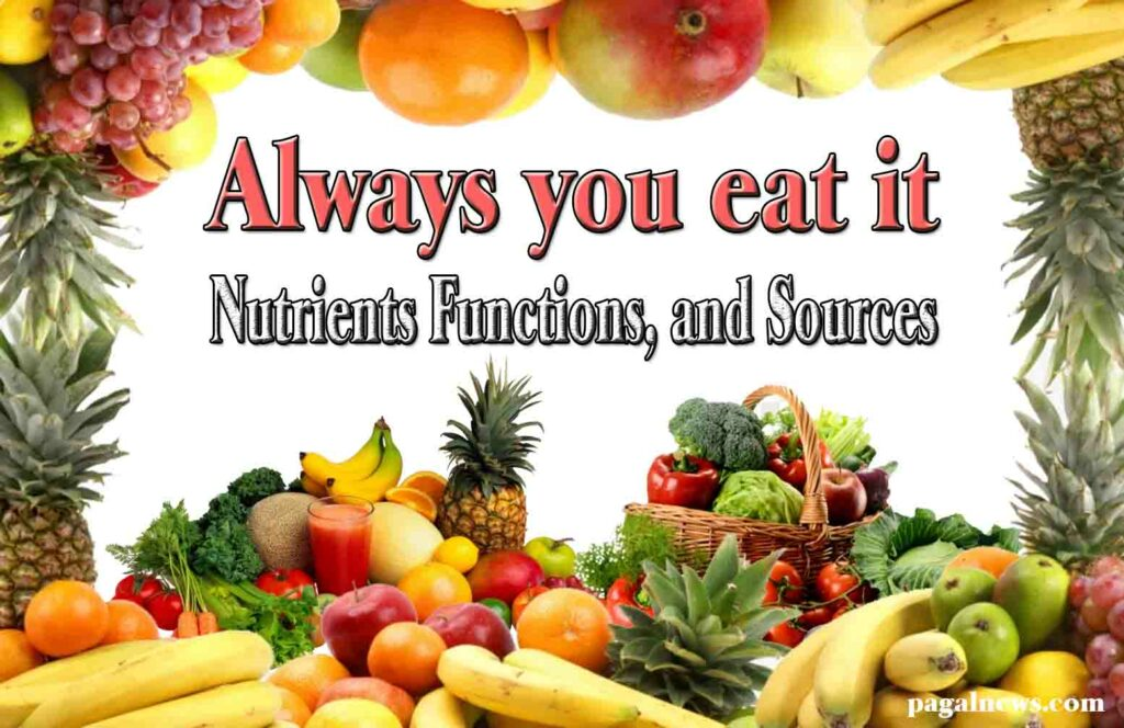Food and Nutrition  and Nutrients Functions, and Sources